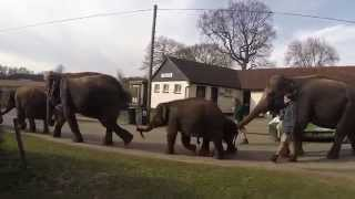 preview picture of video 'Whipsnade Zoo - GoPro Hero3+ Black Edition'