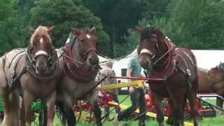 PferdeStark 2015, Schloss Wendlinghausen: Landwirtschaftliche Vorführungen