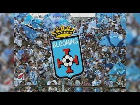 """""""ALDO PEÑA - BLOOMING, BARRA BRAVA"""" Barra: Los Chiflados • Club: Blooming"""