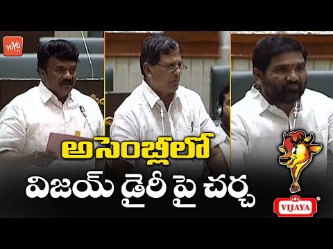 Discussion On Vijaya Dairy In Telangana Assembly | Telangana Budget Session 2019 | YOYO TV Channel