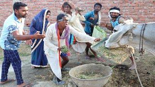 गाय बेचने के लिए घर में हुआ बवाल व्यापारी ने क्या कहा सुनकर पर हो जाएंगे हैरान  khesari 2 Comedy