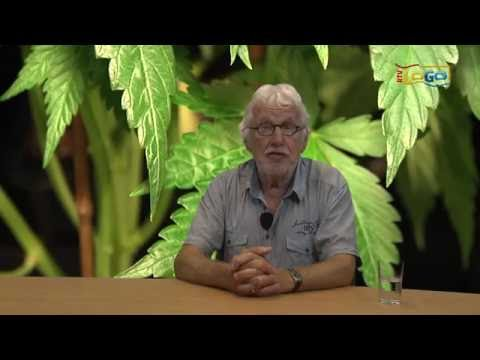 Pieter Smit is het zat! - RTV GO! Omroep Gemeente Oldambt