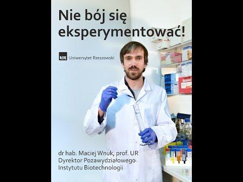 Nie bój się eksperymentować - Instytut Biotechnologii UR