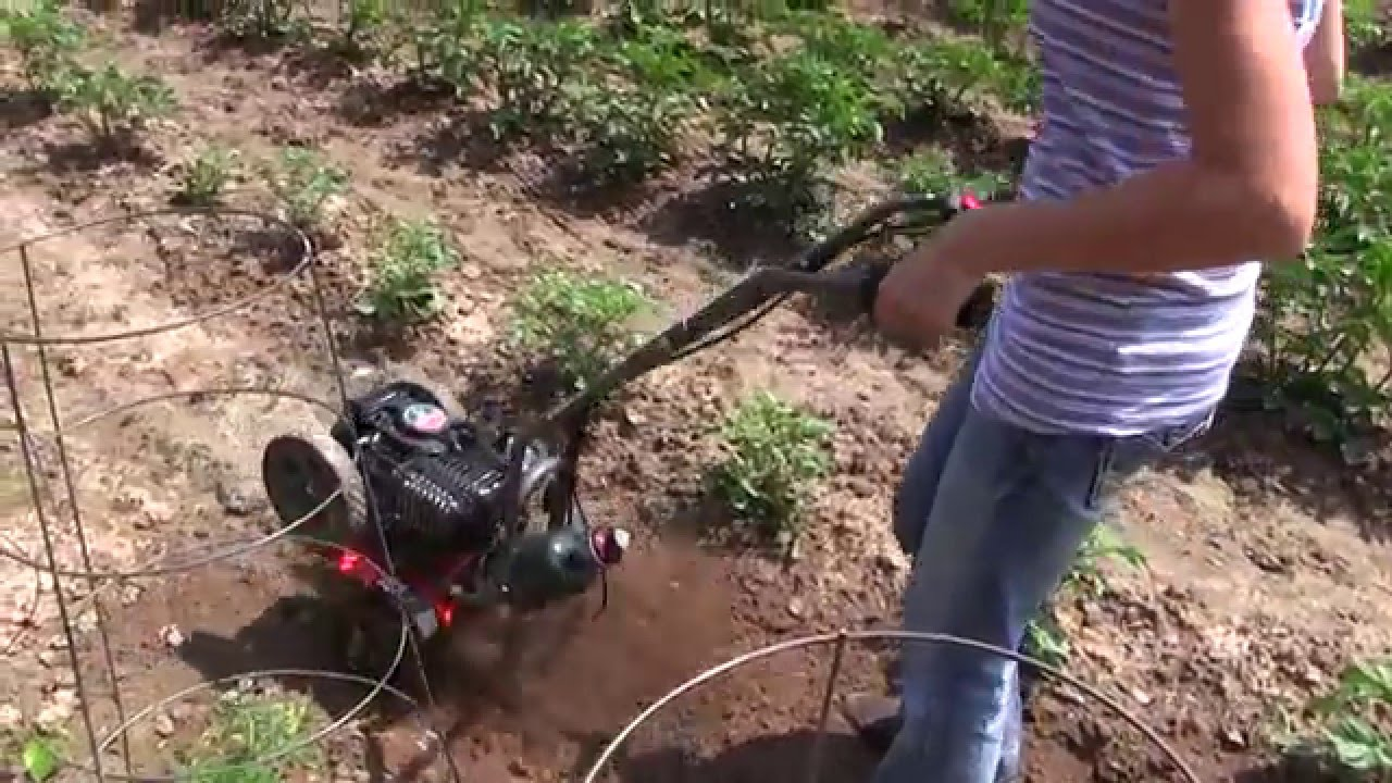 See the Breez R2 Cultivator with 40cc Viper Propane in action