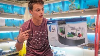 CRAZY TRIPLE OVERFLOW BETTA TANK SET UP! *BIG NEWS*