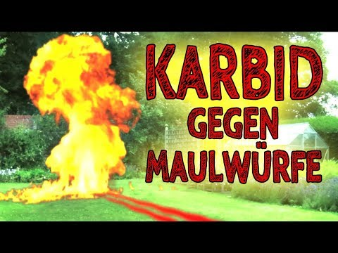 Karbid – Die beste Alternative zu Karbid um Maulwürfe/Wühlmäuse endgültig loszuwerden