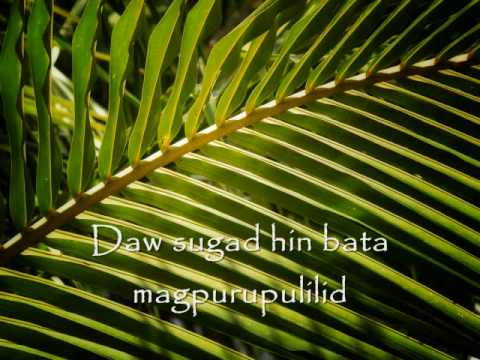 Bakwit diyeta sa kung magkano ang maaari kang mawalan ng timbang