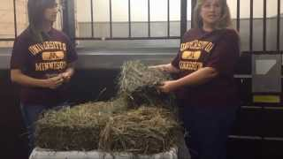 Physically Evaluating Horse Hay