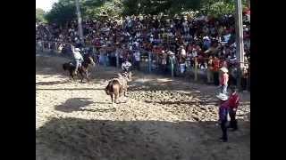 preview picture of video 'Enlace de terneros en la feria de Guáimaro 2014'