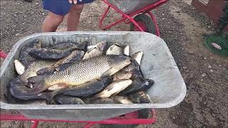 Рыбалка платная в подмосковье савельево
