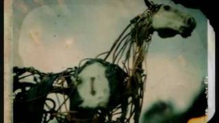 Sparklehorse - Heart of Darkness