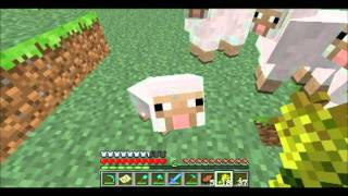 Minecraft Sheep Sex