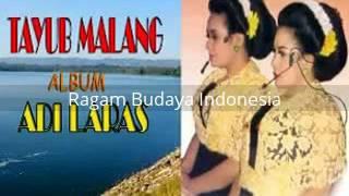 Gambar cover [ full album ] Adi Laras - Tayub Malang - edisi musik