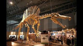 Гигантские чудовища.Спинозавр