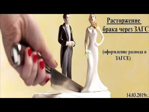 Как оформить развод через ЗАГС: коротко и по существу