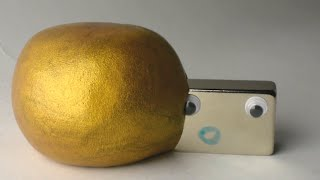 Gold Magnetic Putty Vs. Strong Magnets Time Lapse