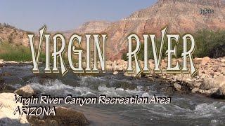 Virgin River at Virgin River Canyon Recreation Area