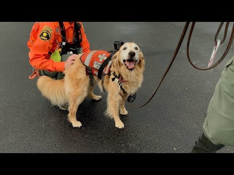Training For A Search And Rescue - YouTube