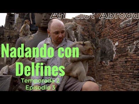 An Idiot Abroad  - Nadando con Delfines T2 E3 / Subtitulado en Español