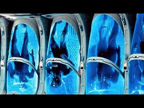 Prostata con i centri del perno