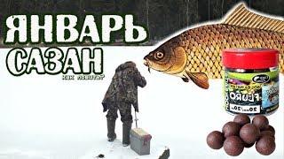 На что лучше ловить сазана в феврале