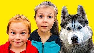 ХАСКИ НАШЛИ СБЕЖАВШИХ ДЕТЕЙ!!! (Хаски Бандит) Говорящая собака DOGVLOG