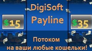 Как заработать в интернете - DigiSoft PayLine