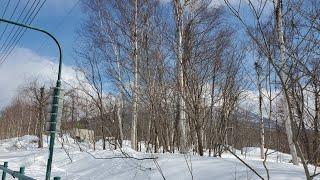Snowing in Japan