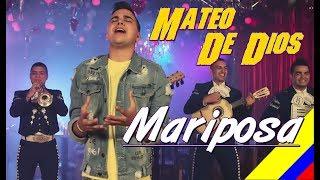 Mariposa   Mateo De Dios  Letra