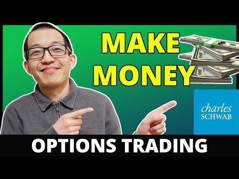 Akcijų pasirinkimo simuliatorius