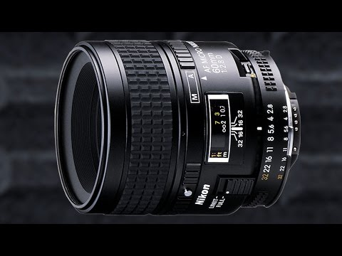 Nikon 60mm f2.8D Macro Lens – Best Macro Lens for All Round Use???