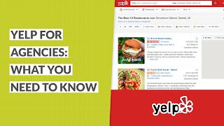 Yelp for Agencies: What You Need to Know