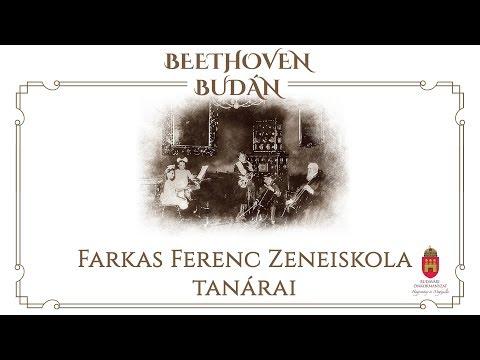 Házimuzsika - Farkas Ferenc Zeneiskola tanárai - video preview image