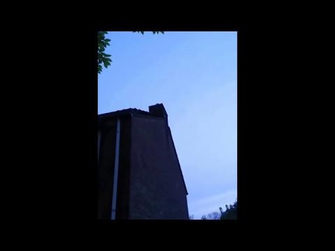 Het vleermuisseizoen is begonnen - Nachtwerk
