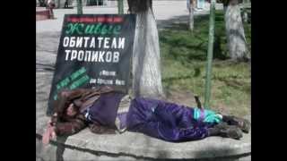 Подборка смешных фото про Россию