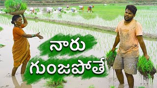 Village paddy farming | my village show sankranti special comedy