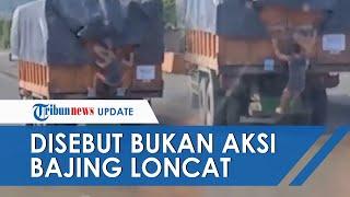 Viral Video Penjarahan Truk di Lampung oleh Pelajar, Polisi: Bukan Bajing Loncat tapi Bantu Ortu