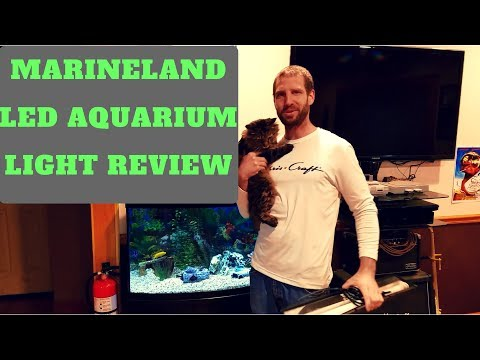 MARINELAND LED AQUARIUM STRIP LIGHT REVIEW / DEMO after owning for 2 years 36″-48″