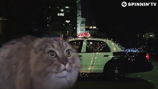 Quintino & Yves V - Unbroken (Cat version) by DJ Potato & Gootunez