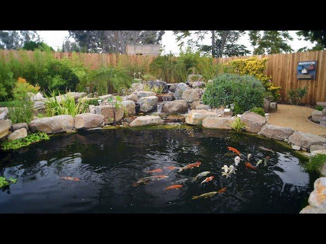 How To Build A Koi Pond - Final