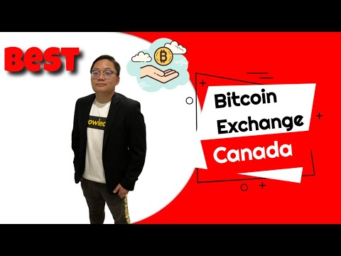 Bitcoin rinkos dangtelio prognozė