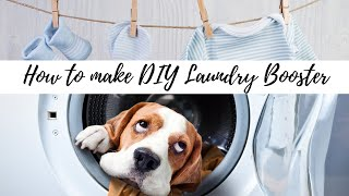 How To Make DIY Laundry Booster