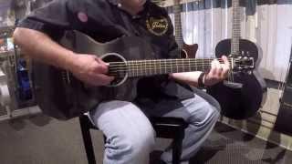 Rainsong P12 Parlor Acoustic Guitar