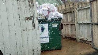 SCRAP DOGS DUMPSTER DIVING DAILY VIDEO #4 GRAB BAGS