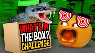 Annoying Orange - What's In The BOX?? Challenge!!!