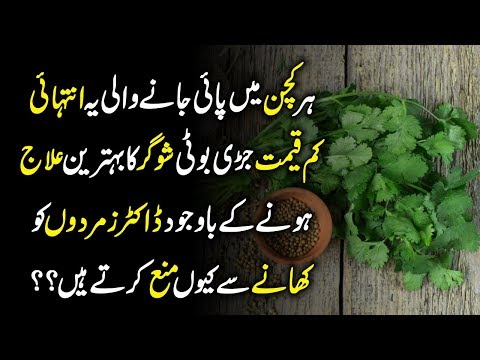 Health Benefits And Side Effects Coriander Sabz Or Khushk Dhania Ke Fayde Or Nuksan || Urdu Lab