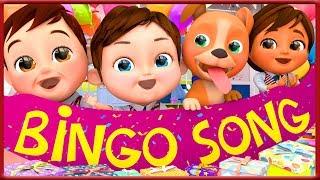 🔴 🐶My Dog Song (Bingo) 🐶🎁Happy Birthday Song🎁🦈 Baby Shark 🦈🚌 Wheels On The Bus 🚌