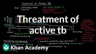 Treatment of Active TB | Infectious diseases | NCLEX-RN | Khan Academy