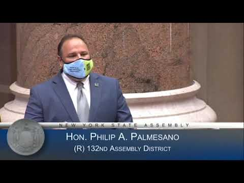 Assemblyman Palmesano speaks on the Assembly floor during 'National Donate Life Month' in 2021
