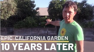 What Happened to My Epic California Urban Vegetable Garden After 10 Years